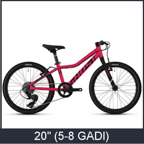 "20"" velosipēdu kategorija"