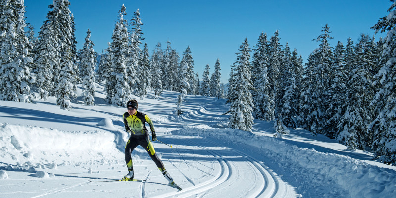 Slidsoļa slēpes